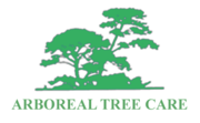 Arboreal Tree Care Pty Ltd